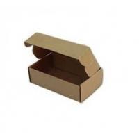 Kilitli Kapaklı Kutu Koli 14x8x4cm